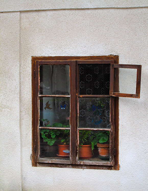 The Window Frame